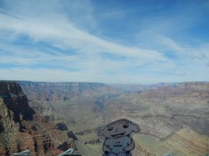Flat Sawyer at the Grand Canyon